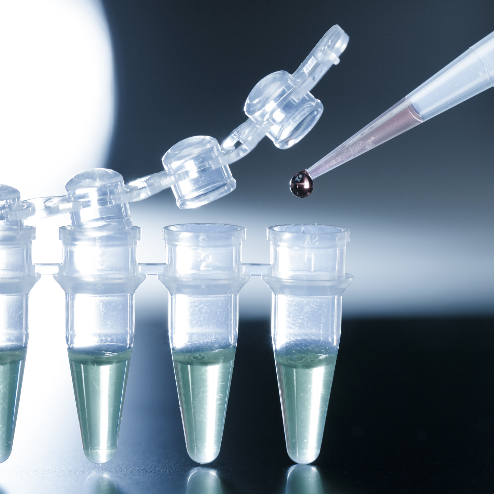 Global Amniotic Product Market 2020 Size, Covid-19 Impact Analysis, key  Insights Based on Product Type and Regional Demand Till 2025 – Bulletin Line